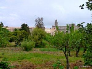 l'abbazia - la tenuta